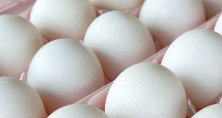 Ovos-coturnicultura